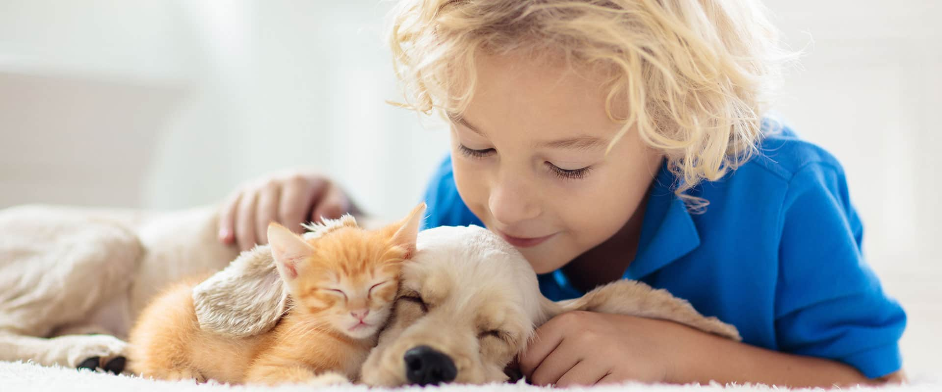 child with puppy and kitten